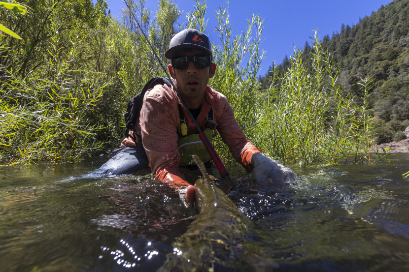 Robby Hogg with Brown Trout on Middle Fork American River. Photo: Scott Blankenfeld
